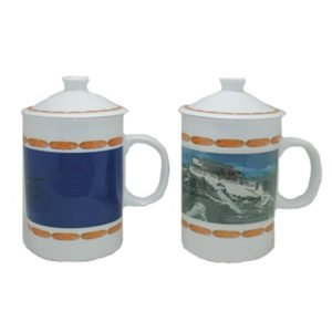 Bone China Ceramic Color Changing Cup With Lid